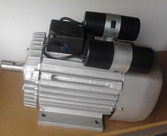 yl系列双值电容单相电动机